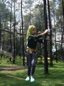 Treetop 3