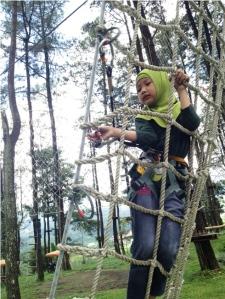 Treetop 7