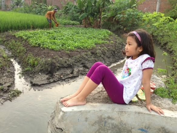 photo 1 (12)