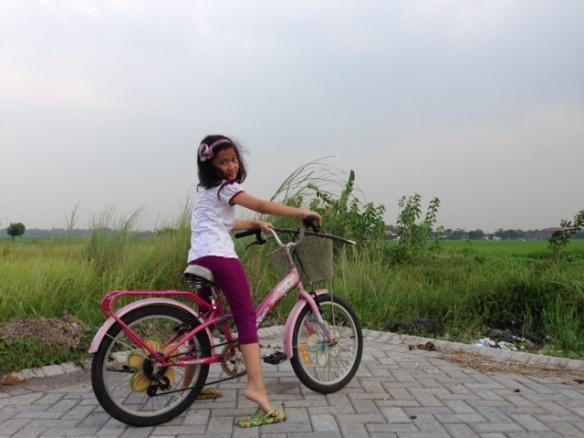 photo 2 (13)